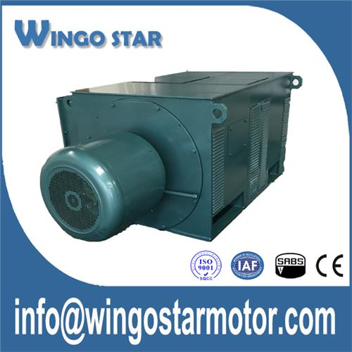 High Voltage Motors